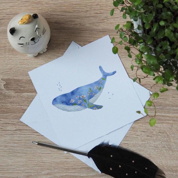 carte postale baleine marguerite