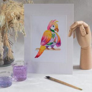 Perroquet femelle 2030