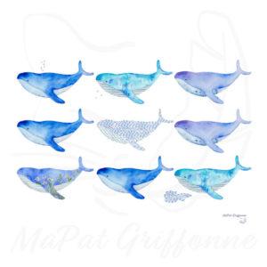 Banc baleines